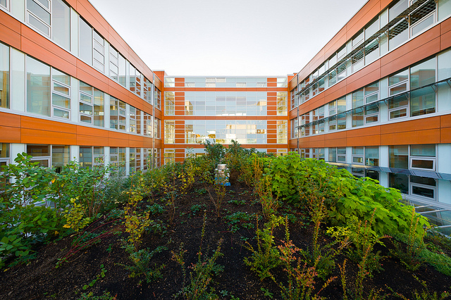 The LEED-Platinum Centre for Interactive Research on Sustainability (CIRS), UBC. Photo: Don Erhardt
