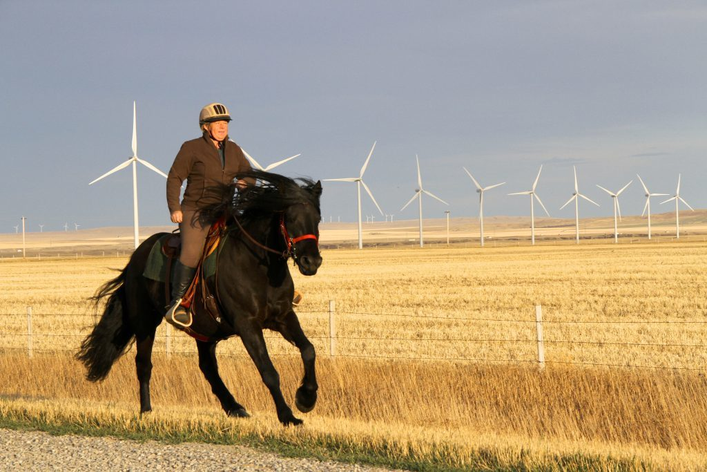 Alberta demonstrates it has the right recipe for renewable power